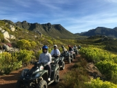 South Africa Forest Adventure launches new package