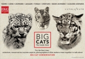 FOMONOMORE To Launch 'Big Cats: The Inside Story' Series From Aug 10