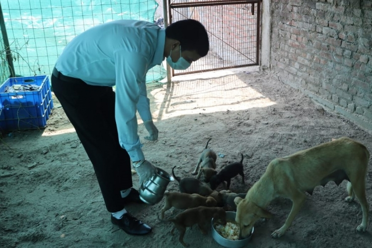 Amatra Hotels Helps Stranded Animals and People