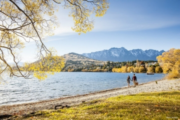 New Zealand sees 10% up in visitor arrivals