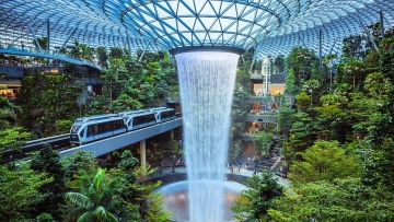 Changi Airport launches STC app